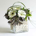 flower arranging white gerbera centrepiece